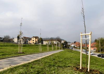 Zasazené stromy u ZŠ Želechovice nad Dřevnicí