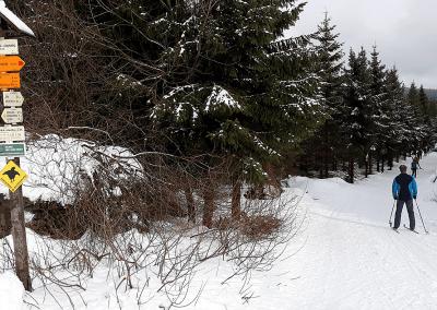 Jizerky na běžkách