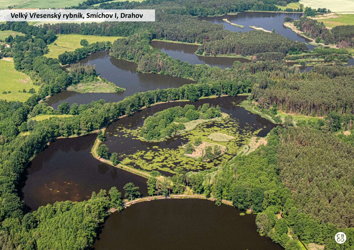 Velký Vřesenský rybník